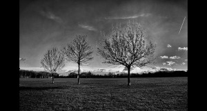 Mabley Green3
